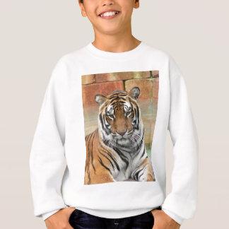 Mieten Tigres in der Betrachtung Sweatshirt