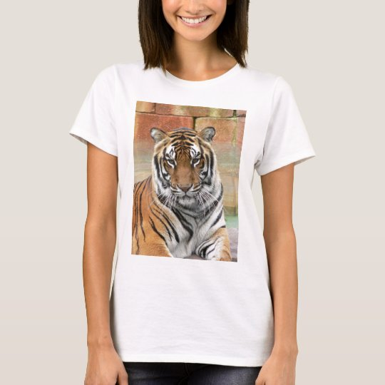 Mieten Tigres in der Betrachtung T-Shirt