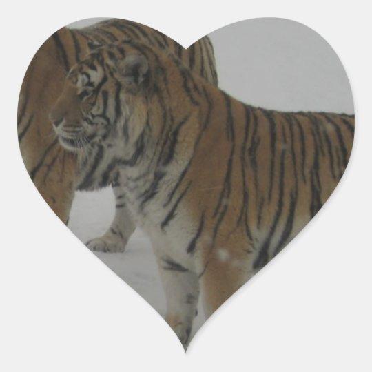 Mieten zwei sibirische Tiger Herz-Aufkleber