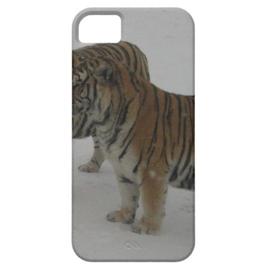 Mieten zwei sibirische Tiger iPhone 5 Schutzhüllen