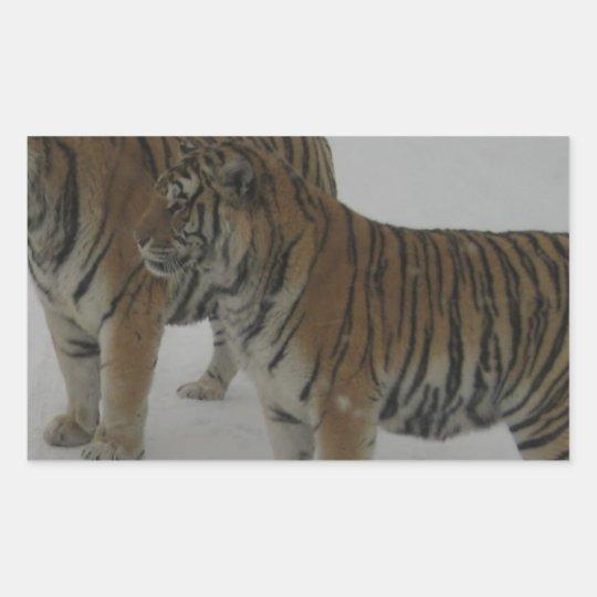 Mieten zwei sibirische Tiger Rechteckiger Aufkleber