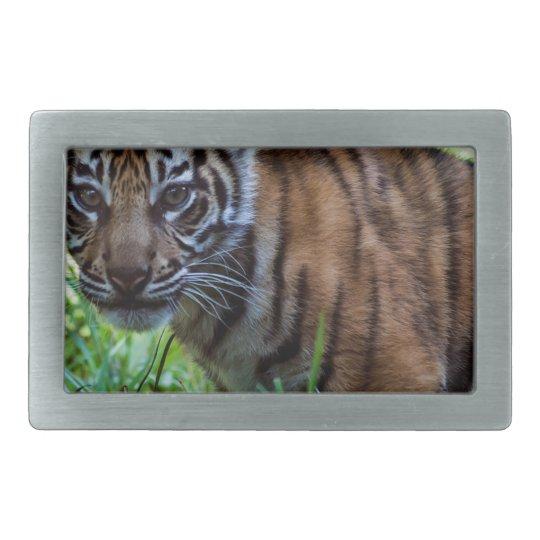 MieteSumatran Tiger CUB Rechteckige Gürtelschnallen