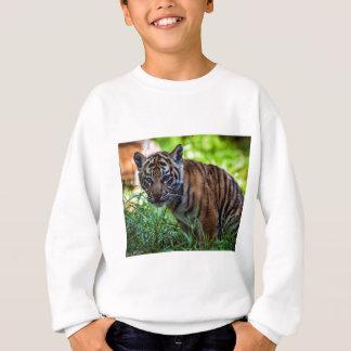 MieteSumatran Tiger CUB Sweatshirt
