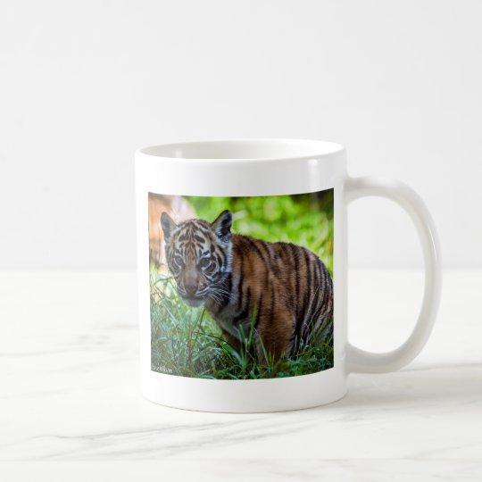 MieteSumatran Tiger CUB Tasse