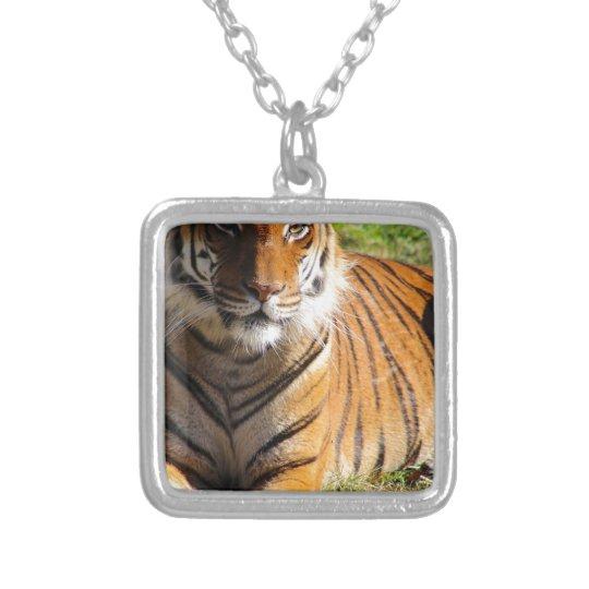 Mietmalaiischer Tiger Halskette Mit Quadratischem Anhänger