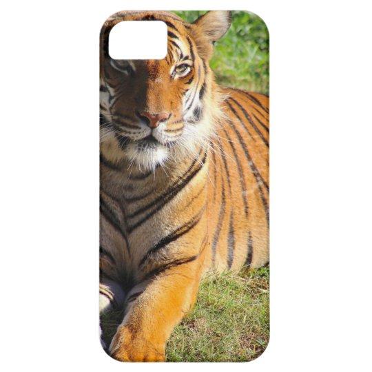 Mietmalaiischer Tiger iPhone 5 Schutzhülle
