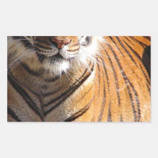 Mietmalaiischer Tiger Rechteckiger Aufkleber