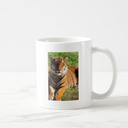 Mietmalaiischer Tiger Tasse
