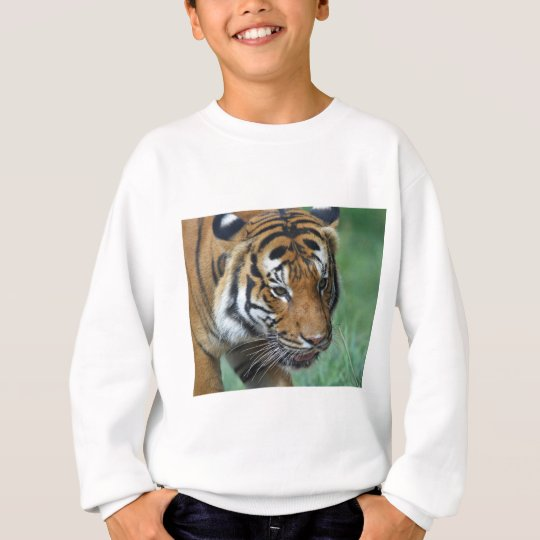Mietmalaysische Tiger-Nahaufnahme Sweatshirt