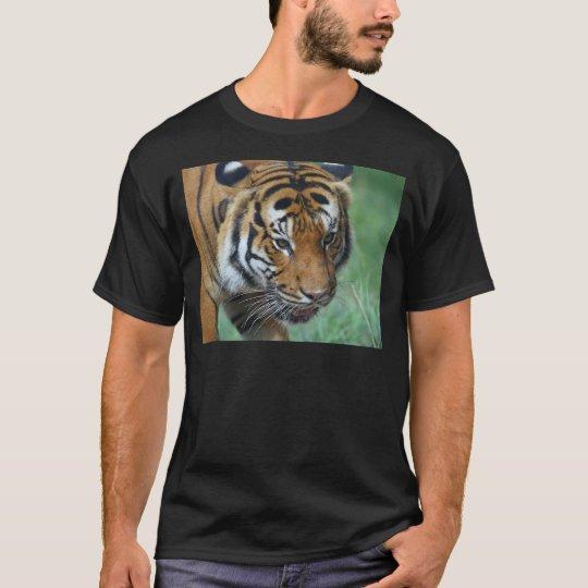 Mietmalaysische Tiger-Nahaufnahme T-Shirt