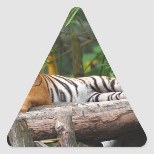 Mietmalaysischer Tiger, der auf Klotz Lounging ist Dreieckiger Aufkleber