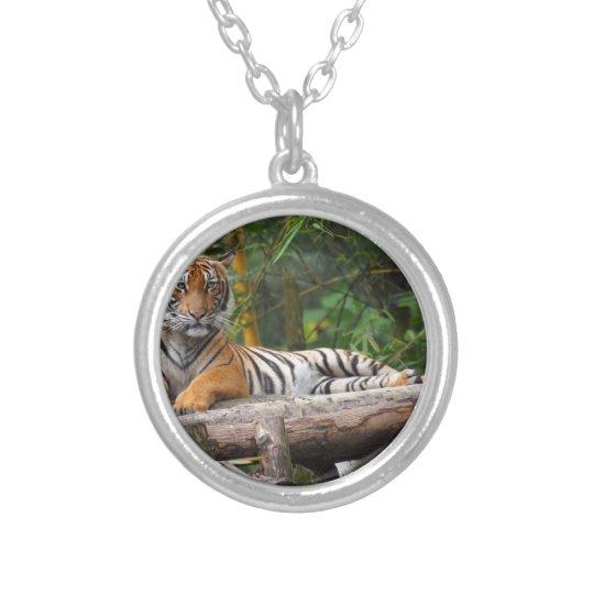 Mietmalaysischer Tiger, der auf Klotz Lounging ist Halskette Mit Rundem Anhänger