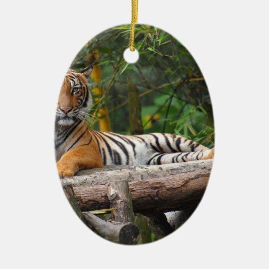 Mietmalaysischer Tiger, der auf Klotz Lounging ist Ovales Keramik Ornament