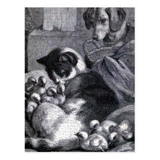 """Mietze-und Kinder"" Vintage Illustration Postkarte"
