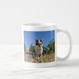 Miezekatze-Katzen-Abenteuer Tasse