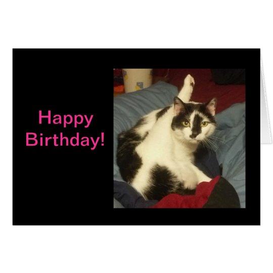 Miezekatze-Katzen-Geburtstags-Karte Karte