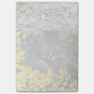 Mimose die Tiger-Katze in den gelben Post-it Klebezettel