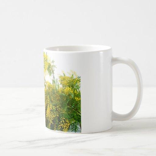 Mimose Tee Tassen