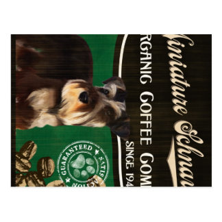 Miniaturschnauzer-Marke - Organic Coffee Company Postkarten