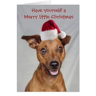 Minimaler Buttonhund mit Sankt-Kappe Karte