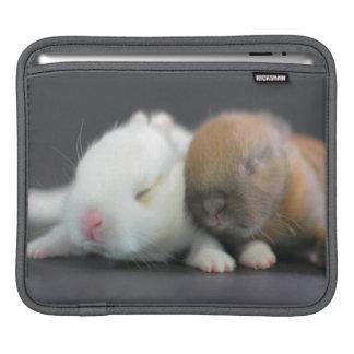 Mischungszucht Netherland zwergartiger Kaninchen iPad Sleeves
