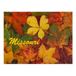 Missouri-Herbst verlässt Postkarte