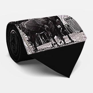 Missouri-Maultier Krawatte