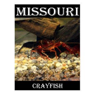 Missouri-Panzerkrebse Postkarte