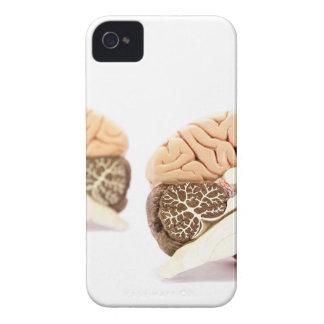 Modell der menschlichen Gehirne abgeschieden auf Case-Mate iPhone 4 Hülle
