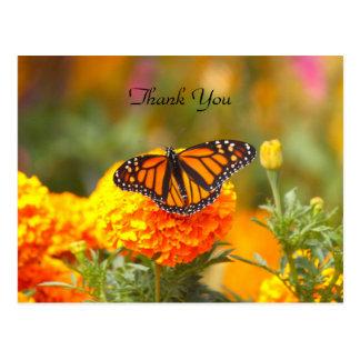 Monarch auf einer Postkarte der Ringelblumen-TY
