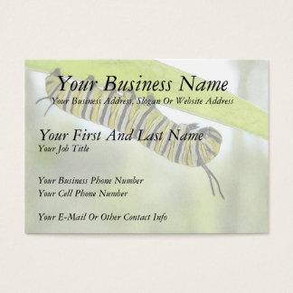 Monarch-Schmetterlings-Raupe, die einen Milkweed Visitenkarte