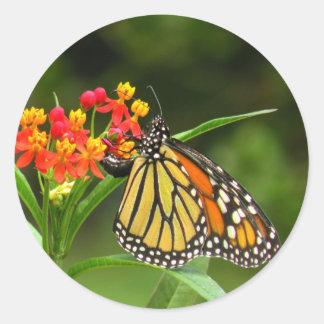 Monarchfalter-Aufkleber Runder Aufkleber