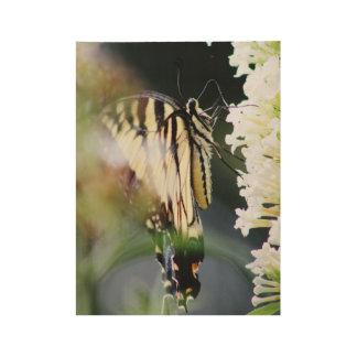 Monarchfalter Holzposter
