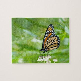 Monarchschmetterling auf Milkweed-Fotopuzzlespiel