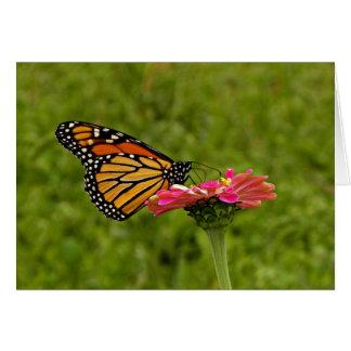 Monarque sur la carte de note de fleur