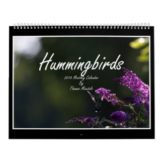 Monatskalender der Kolibri-2018 durch Tom Minutolo Kalender