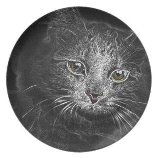 Mondwesentliches der sibirischen Miezekatze-Katze Teller