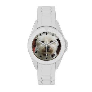Montre faite sur commande de photo d animal famili montres cadran