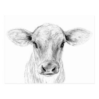 MOO eine junge Jersey-Kuh Postkarte