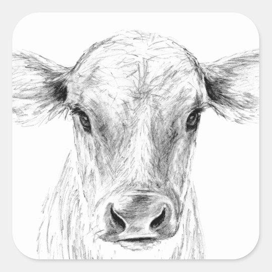 MOO eine junge Jersey-Kuh Quadratischer Aufkleber