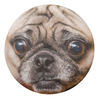 Mops-Hund Radiergummis 0