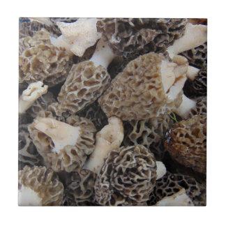 Morchel-Pilze Kleine Quadratische Fliese