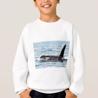 Mörder-Schwertwal-männliche Wal-San- Juaninsel Sweatshirt