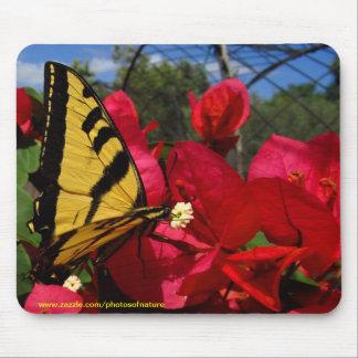Mousepad - Butterlfly, die auf einer Blume sind zu