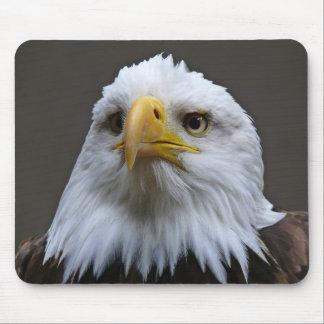Mouspad Mauspad Weißkopfadler Adler