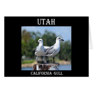Möve Utahs Kalifornien Karte