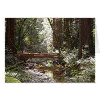 Muir Holz-Brücke II Karte