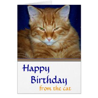 Mürrische Tabby-Katzen-Geburtstags-Karte - lustig Karte