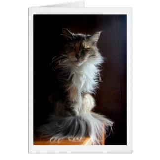 Mürrische, würdige alte Katze Karte