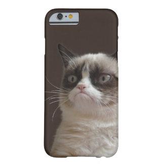 Mürrischer Katzen-greller Glanz Barely There iPhone 6 Hülle